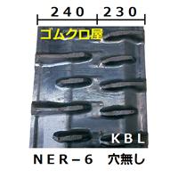NER-6